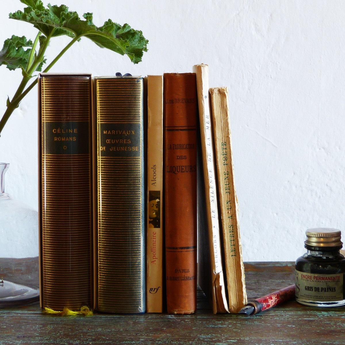 Livres insolites - Atelier Dans les Yeux de Lucie